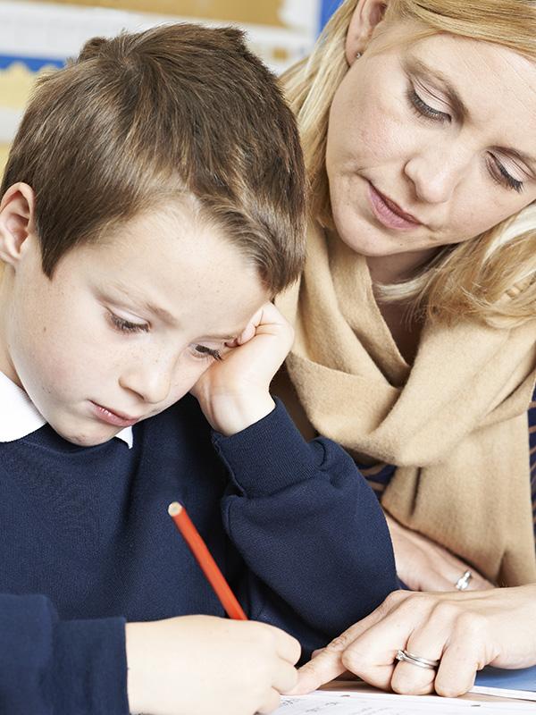 School Based Evaluations
